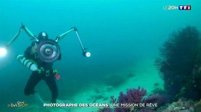 Protection des océans : la précieuse mission du plongeur-photographe Alexis Rosenfeld