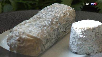 Quatre à table : du fromage de chèvre dans tous les plats