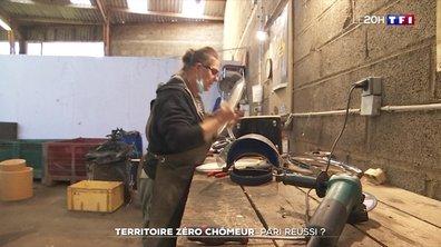 """Quel bilan pour les """"territoires zéro chômeur"""" ?"""