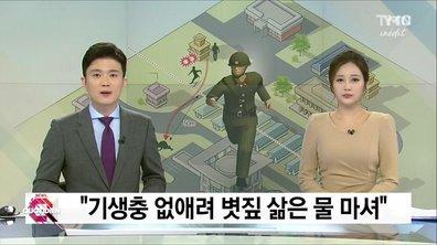 Corée du nord : le déserteur est devenu une arme pour la Corée du Sud