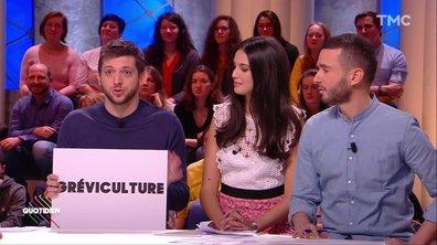 """Fact-checking : d'où vient la """"gréviculture"""" ?"""
