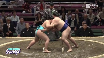Mercredi Transpi : Sumo, du lourd sur le tatami !