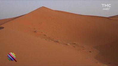 Morning Glory - Un véritable désert politique !