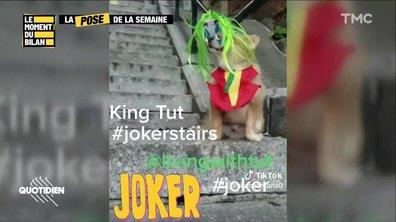 Le Moment du bilan : le disque rayé de Marine Le Pen, les escaliers du Joker partout sur Instagram et les lunettes de Macron