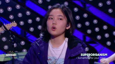 Superorganism : « Something for your mind » en live dans Quotidien (exclu web)