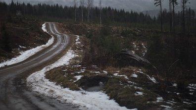 WRC 2016 : le Rallye de Suède raccourci de 90 km