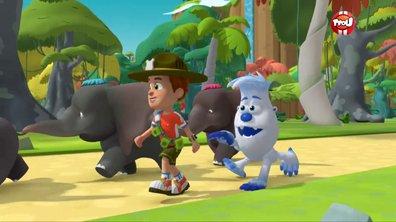 Les trois bébés éléphants - Ranger Rob