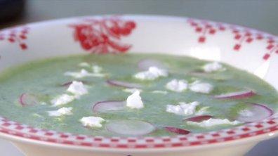Crème de fanes de radis