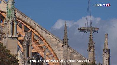 Reconstruction de la cathédrale Notre-Dame de Paris : le chantier tourne au ralenti