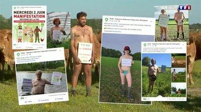 """Réforme de la PAC : """"Mis à poil"""", des agriculteurs bio posent nus"""