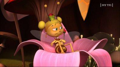 Maya l'Abeille - S01 E58 - Reine d'un jour