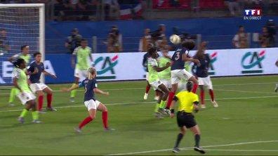 Nigeria - France (0 - 0) : Voir la tête de Renard en vidéo