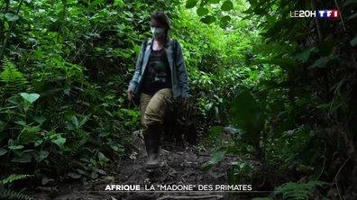 Rencontre avec Amandine Renaud, qui se bat pour la protection des chimpanzés en Afrique