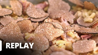 Risotto de coquillettes jambon truffé