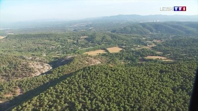 Risque d'incendie dans les Bouches-du-Rhône : les pompiers sont sur le qui-vive