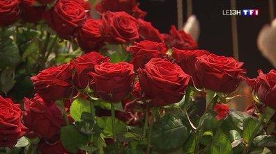 Saint-Valentin, un grand jour pour les fleuristes