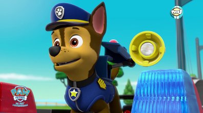 Chase, le meilleur chien de troupeau ! - Paw Patrol, la Pat' Patrouille