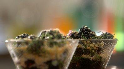 Salade de mûres sauvages au sirop de pois de senteur et crumble aux palets bretons