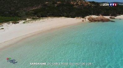 Sardaigne : à la découverte de la Spiagga Rosa, l'une des plus belles plages du monde