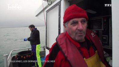 SEPT À HUIT LIFE - Le Guilvinec : à la rencontre des derniers loups de mer
