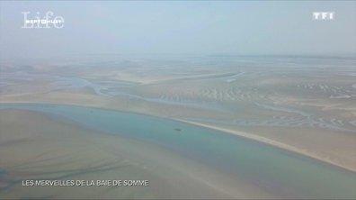 SEPT À HUIT LIFE - Les merveilles de la baie de Somme