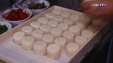 Série Sancerre (3/4) : le Chavignol, un fromage de chèvre indissociable à la gastronomie sancerroise