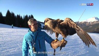 Skier avec des aigles en Haute-Savoie