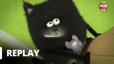 Splat & Harry - Une souris dans la gorge