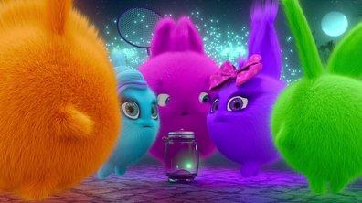 Sunny Bunnies - Les lucioles