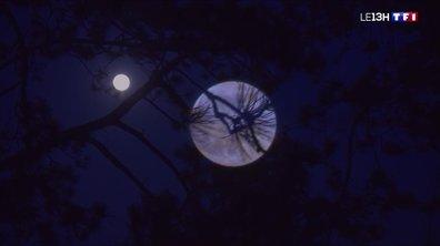 """""""Super Lune rose"""" : un phénomène source de légendes"""