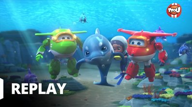 Super Wings - Dauphins en détresse
