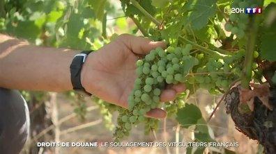 Suspension des droits de douane punitifs entre États-Unis et l'Union européenne : le soulagement des viticulteurs français