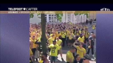 Téléfoot, l'After - Le Buzz : Brondby perd, mais s'ambiance !