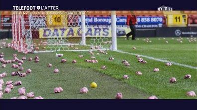 Téléfoot, l'After - Le Buzz : Pluie de cochons en Angleterre !