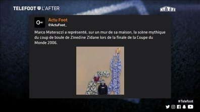Téléfoot, l'After - Les tweets de la semaine : Materazzi, Fekir et Marquinhos