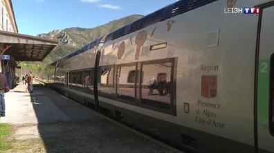 Tempête Alex : sept mois après, le train de retour à Tende
