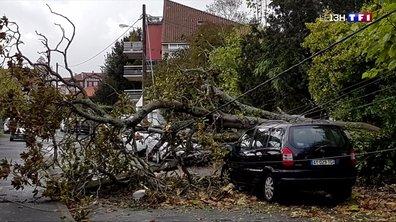 Tempête Amélie : 140 000 foyers privés d'électricité