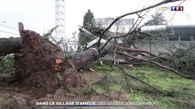 Tempête Amélie : des dégâts considérables dans certains départements