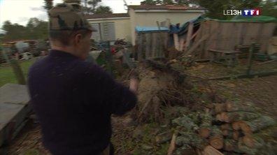 Tempête : la commune de Lège-Cap-Ferret continue les travaux de nettoyage