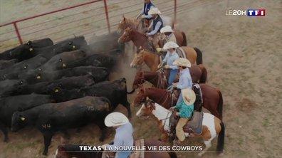 Texas : la vie de cowboys a été bouleversée par l'épidémie