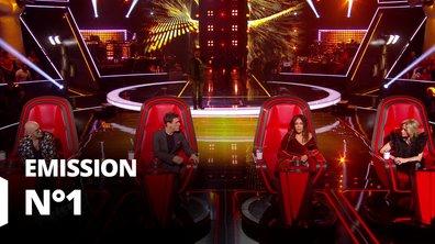 The Voice 2020 - Auditions à l'aveugle 1