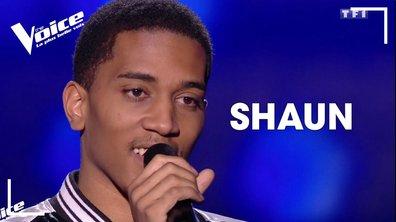 Shaun - Ziggy (Starmania - Céline Dion) -