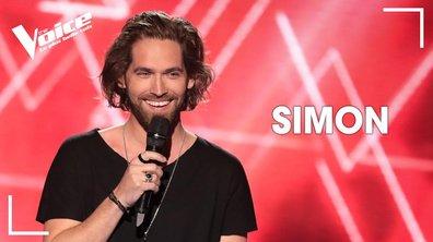 "Simon Morin - ""Skin"" (Rag'N'Bone Man)"