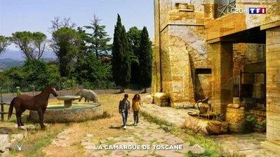 Toscane : à la découverte de la Maremme
