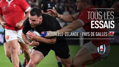 Nouvelle-Zélande - Pays de Galles : Voir tous les essais du match en vidéo