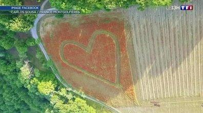 Un agriculteur de Paca déclare sa flamme avec un cœur géant dans un champ