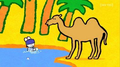 Didou, dessine-moi - S01 E03 - Un chameau