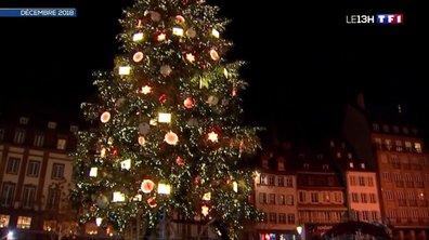 Un sapin de Noël géant installé à Strasbourg