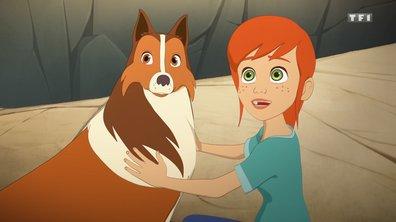 Lassie  : Toutes les vidéos