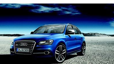 Mondial de l'Auto 2012 : Audi choisit la rareté avec son SQ5 TDI Exclusive Concept